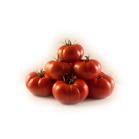 tomate rebelion