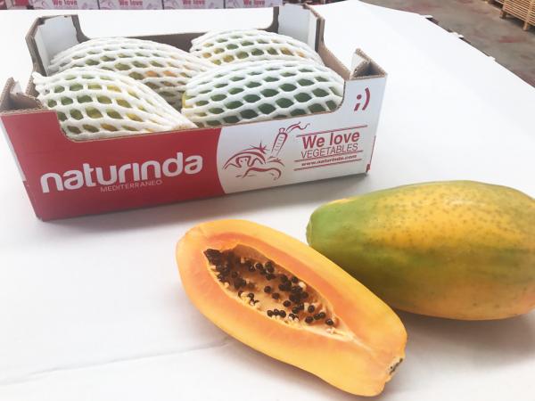 """Papaya, una fruta extraordinaria especialidad de """"naturinda"""""""