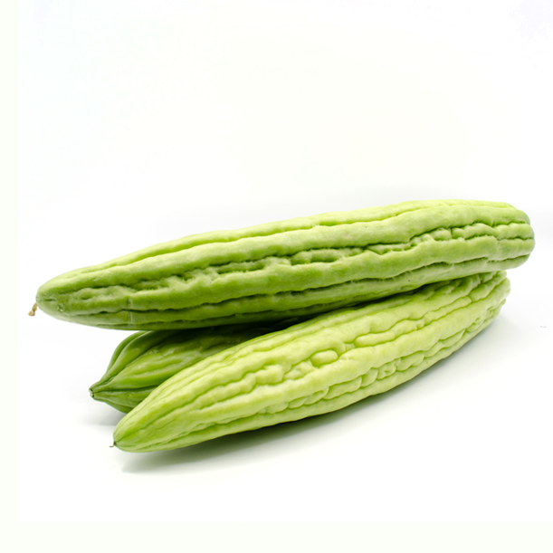 Bittere Melone
